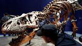 Οι δεινόσαυροι δεν μπορούσαν να βγάλουν τη γλώσσα τους