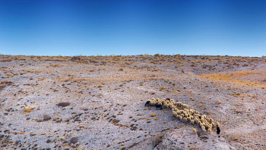 Kıbrıslı Rumları kuraklık vurdu