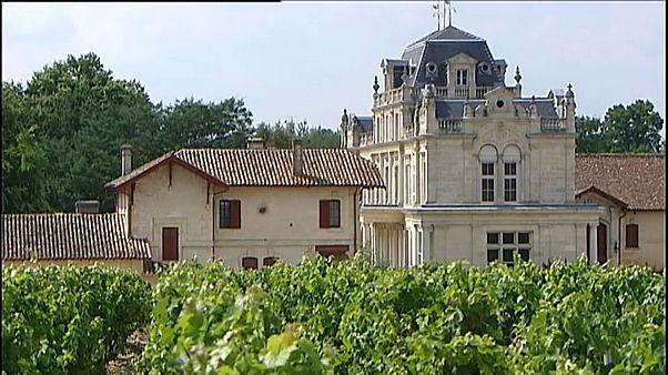 Zu viel Zucker: Weingut wegen Panscherei verurteilt