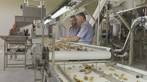 O impulso europeu na indústria agroalimentar da Moldávia