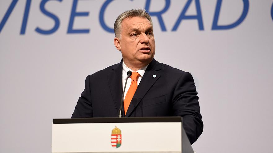 Dopo aver visto questa foto, stilista ungherese offre il suo aiuto a Orban