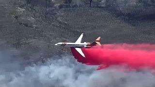 Erdőtűz tombol Kaliforniában