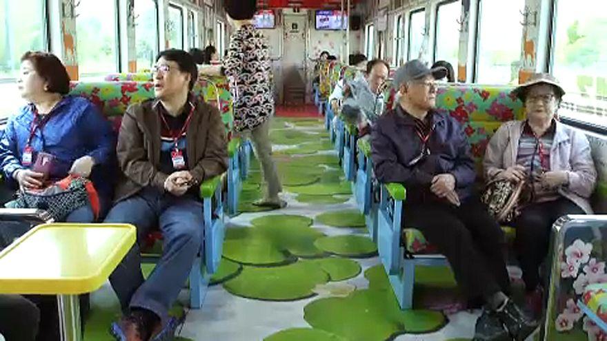 Újabb közös projekt a két Koreában