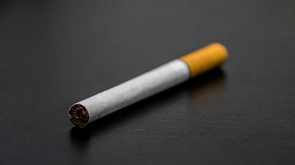 فرانسه؛ سیگار کشیدن در پارکهای شهر استراسبورگ ممنوع شد