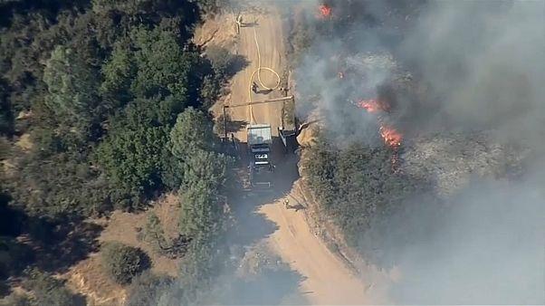 حرائق الغابات تجبر آلاف السكان على الفرار شمال كاليفورنيا