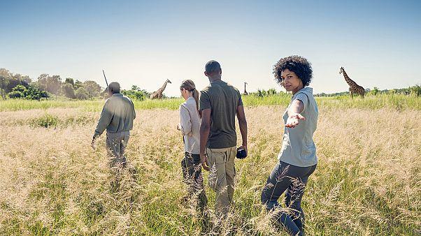 Safaris na África do Sul: a aventura estende-vos os braços