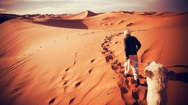 Cezayir'in çöle terk ettiği sığınmacılar