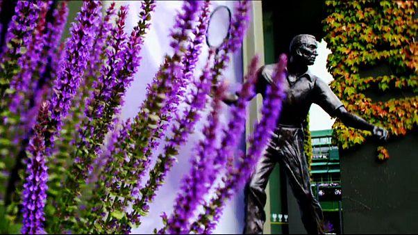 Aufschlag Wimbledon