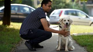 Çocuklarda diyabet krizinin 'kokusunu alan' köpekler görevde