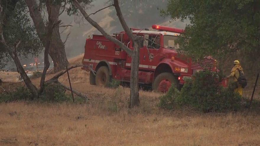 سيارة اطفاء في غابات كاليفورنيا