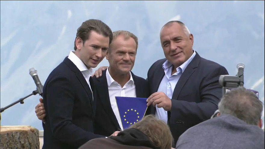 Copresidente do Grupo Verde no PE acusa Viena de apoiar grupo de Visegrado