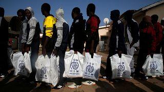 Cartão Azul poderia ajudar refugiados e migrantes a encontrar trabalho