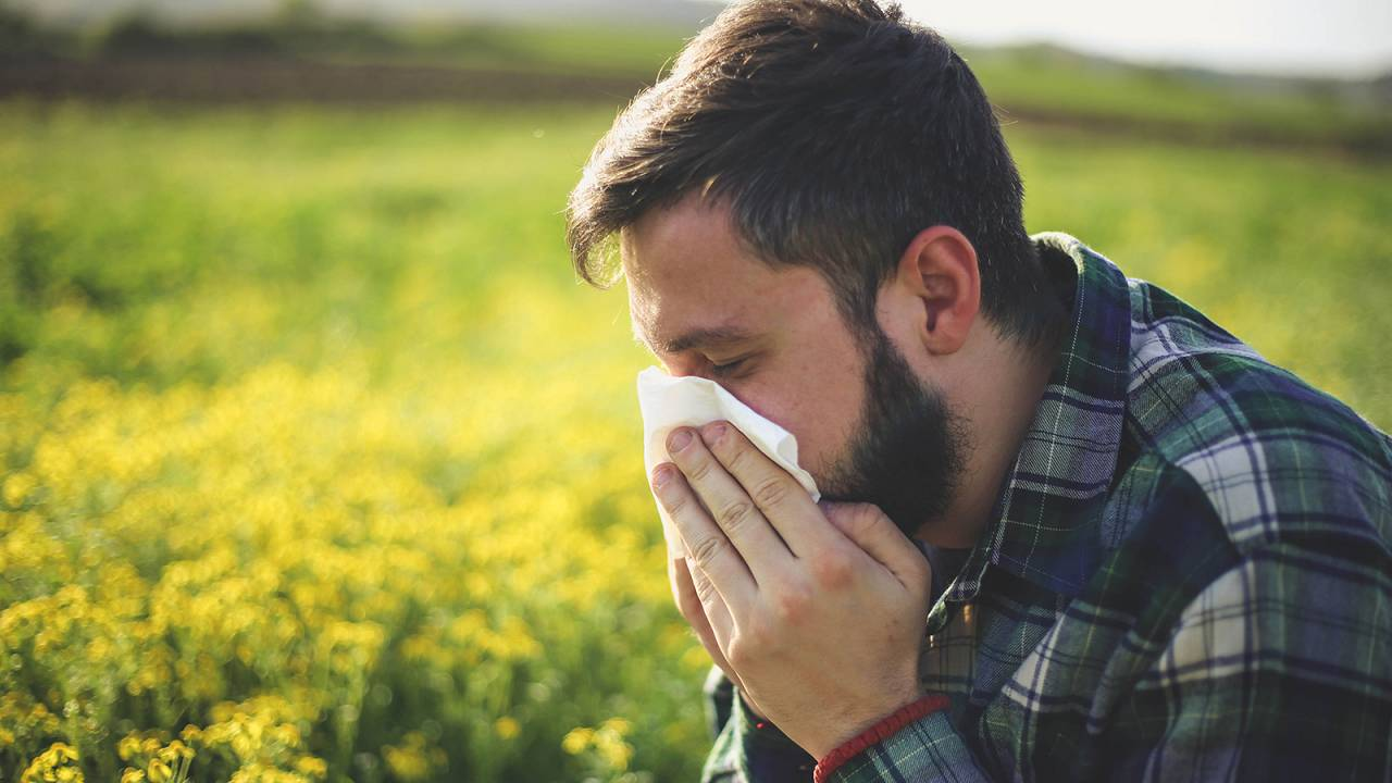 What's in the air? New apps using Copernicus data to inform increasing population with respiratory diseases