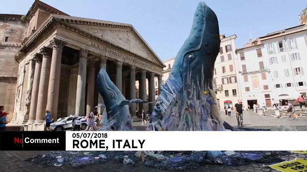 Baleias choram contra o plástico