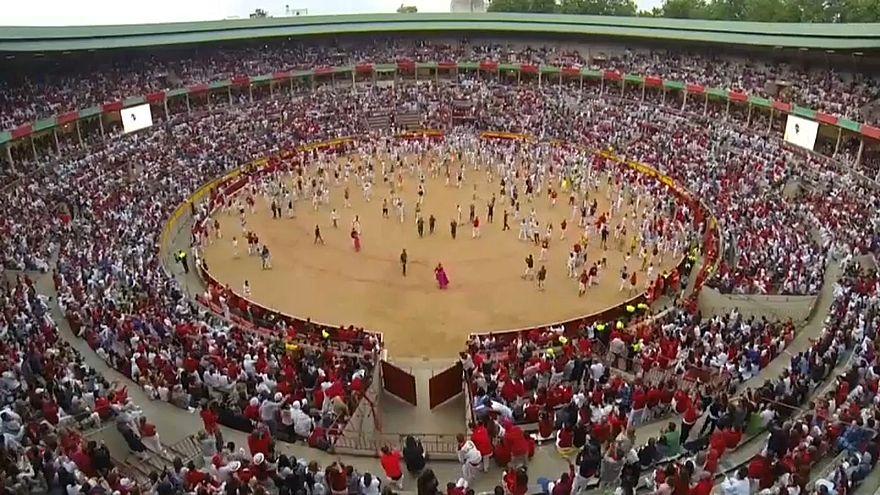 Proteste gegen Stierhatz in Pamplona