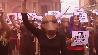 Protesters against abuse of bulls in Pamplona