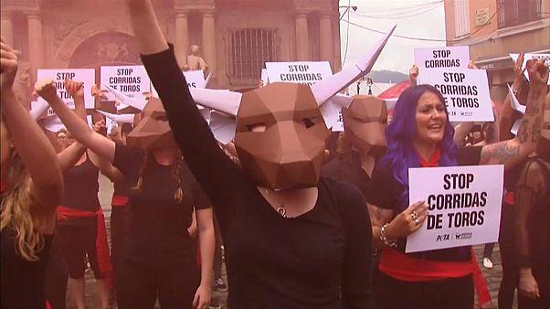 san fermin boğa güreşi protestoları