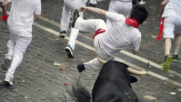 شاخ گاوهای خشمگین پنج تن را در اسپانیا زخمی کرد