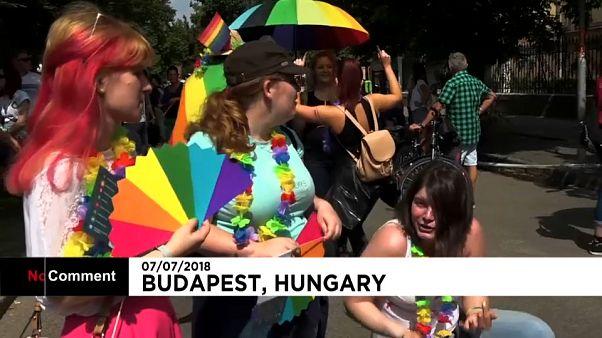 La Gay Pride de Budapest étroitement encadrée après des menaces de l'extrême-droite