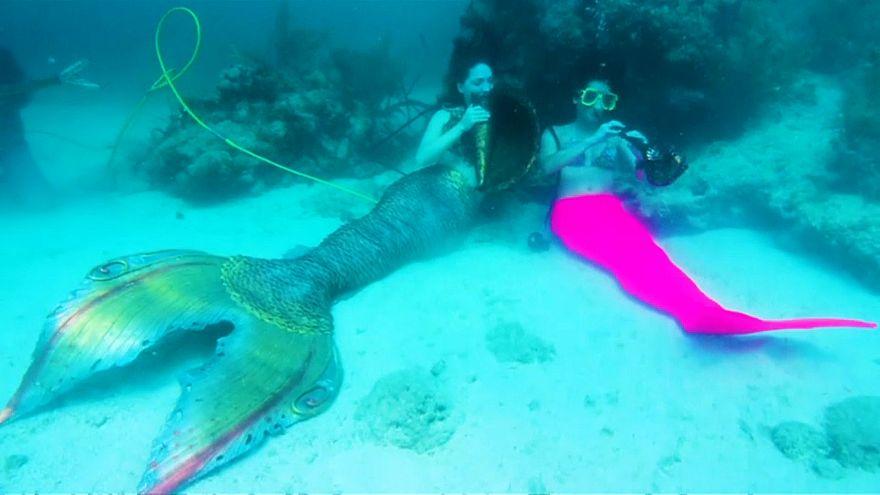 مهرجان موسيقي تحت الماء للتوعية بأهمية حماية الشعاب المرجانية