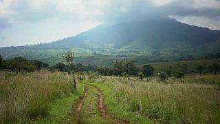 Gorongosa: um caminho para o futuro