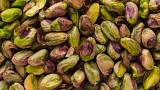 Nuts are beyond nutritious — they improve brain function