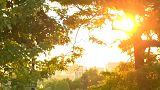 Québec ächzt unter Hitzewelle