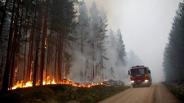 Ein Waldbrand nahe Ljusdal