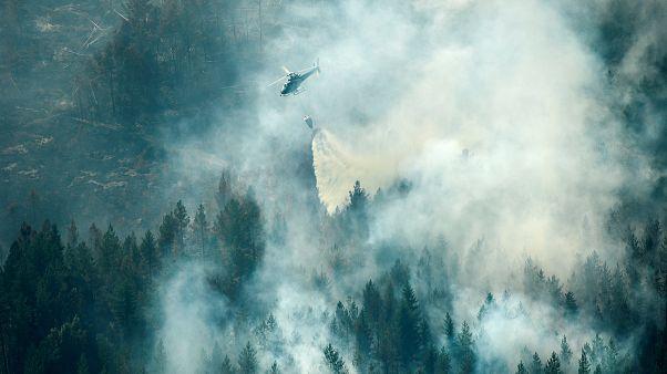 Incendi boschivi in Svezia, arrivano aiuti anche dall'Italia