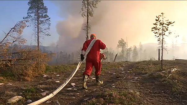 Auch am Polarkreis: Verheerende Feuersbrünste in Schweden