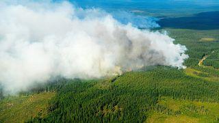 Vista aérea de uno de los incendios, cerca del municipio de Ljusdal