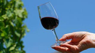 التغير المناخي يساهم في تطوير صناعة النبيذ البلجيكي!