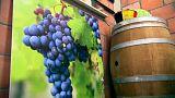 Öfter mal was Neues: Wein aus Belgien