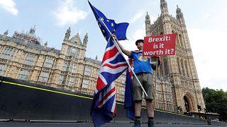 Brexit karşıtı bir gösterici