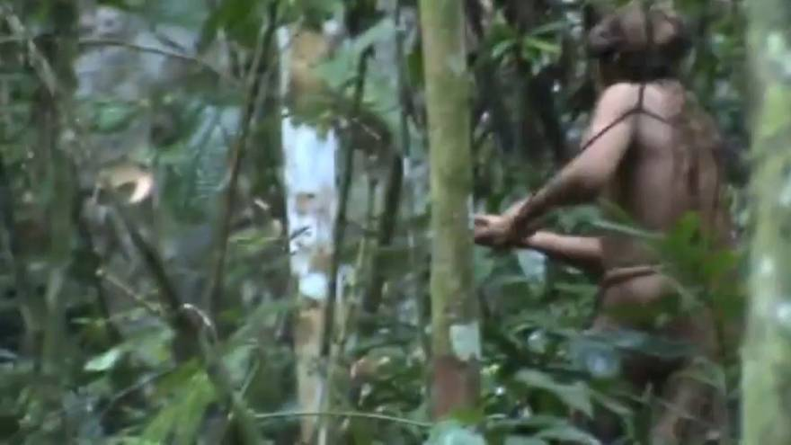 Watch: Fresh footage of uncontacted indigenous man in Amazon emerges