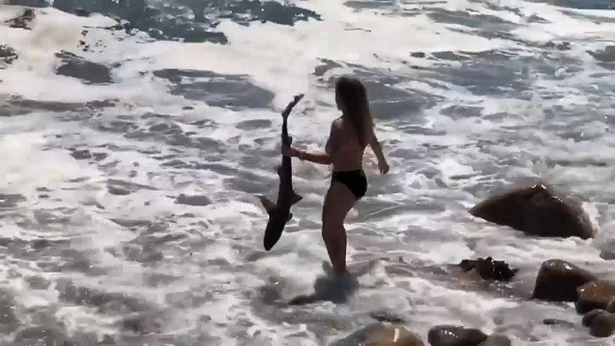 شاهد: فتاة تمسك بقرش من ذيله وشاب يسقط بين مفاصل جسر!