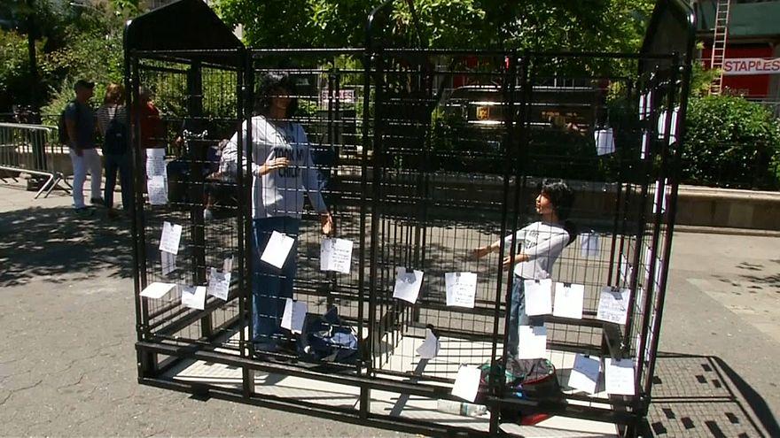 NO COMMENT: uma jaula que é arte e protesto