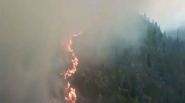 Σουηδία: Πολιτική αντιπαράθεση για τις δασικές πυρκαγιές