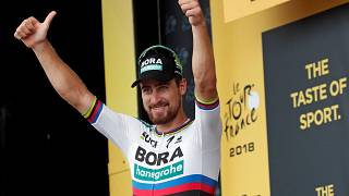 Tour de France: Peter Sagan cala il tris