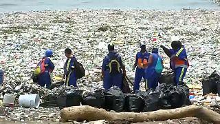 """Утопающий в мусоре """"Карибский рай"""""""