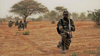 ارتش نیجر از کشته شدن ده عضو بوکوحرام خبرداد
