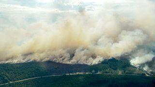 Σουηδία: Αντιμέτωπη με πυρκαγιές και καύσωνα