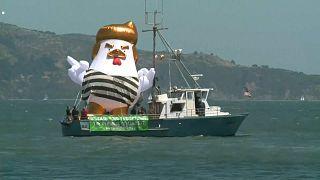 Un poulet gonflable à l'effigie de Donald Trump fait sensation dans la baie de San Francisco