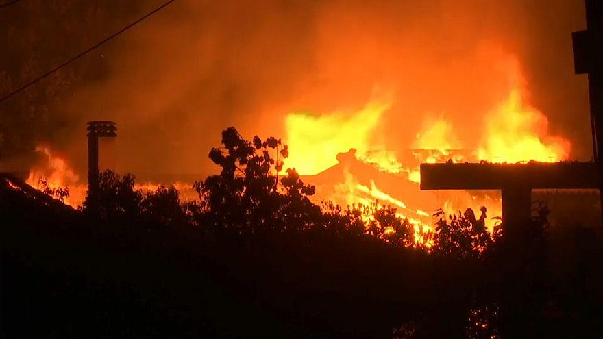 Смертоносные пожары в Греции: погибли 50 человек