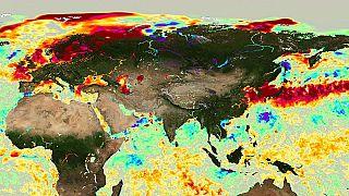 Welche Konsequenzen haben Europas warme Meere für die Umwelt?