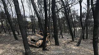 Yunanistan yangını: Alevlerin sardığı kıyı şeridinde Yeni Fethiye (Nea Makri) de var