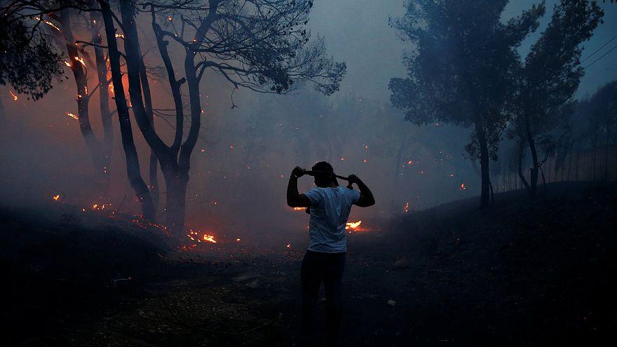 شاهد: يونانيون يلجأون إلى البحر هرباً من النار