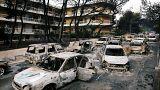 Uydu görüntüleriyle Yunanistan'daki yangın