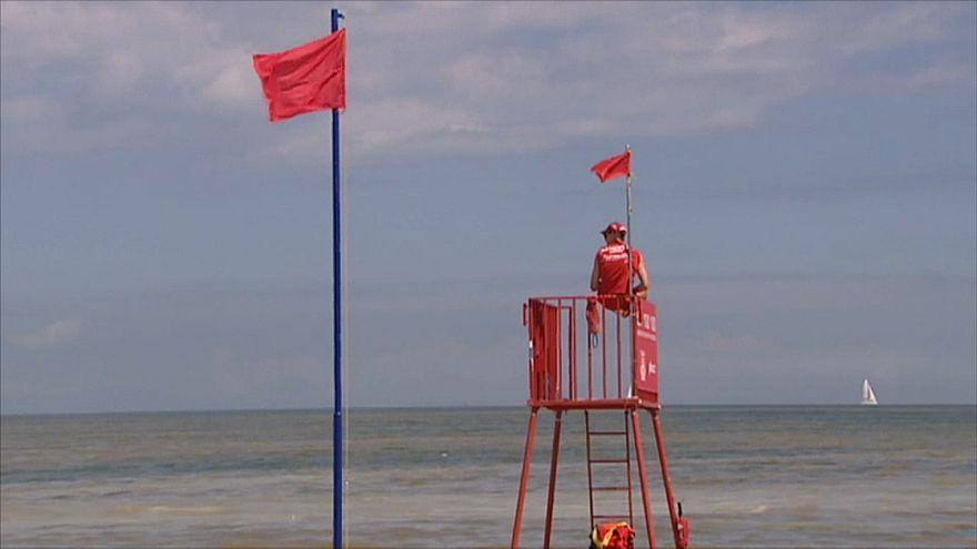 Blaualgenalarm an der Ostsee