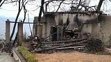 Nach Waldbränden in Athen beginnt erste Schadensermittlung